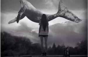 我们的孩子为什么会被蓝鲸自杀游戏吸引
