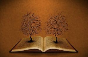 小故事:两棵树,你砍哪一棵?