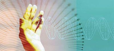 性格基因检测:你的基因决定你的性格和未来!