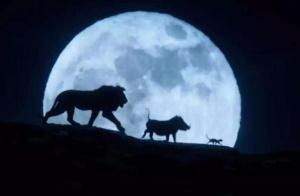 《狮子王》带给我们的普世心理学价值启示