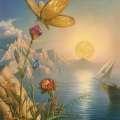 蝴蝶采蜜,多么惬意的场景!