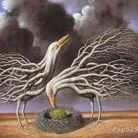 传说中的枯鸟