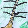画树心理测验图片个例
