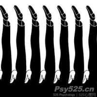 男人的腿还是女人的腿?