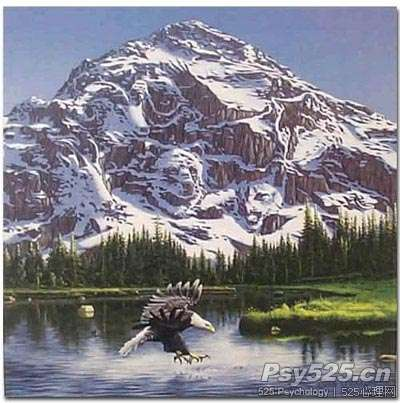 山上你能看到多少动物???